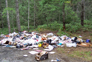 how to stop illegal dumping