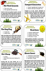 Pesticide Recipe Cards