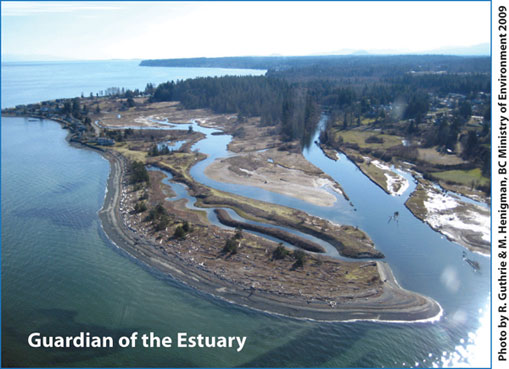 Little Qualicum River Estuary Regional Conservation Areac