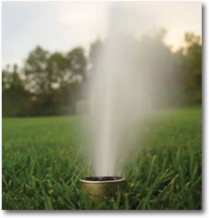 Residential Irrigation Review Program